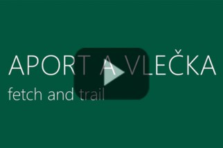 video03-aport-a-vlecka